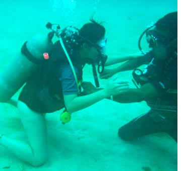 Advanced PADI Open Water Course in Bocas del Toro, Panama