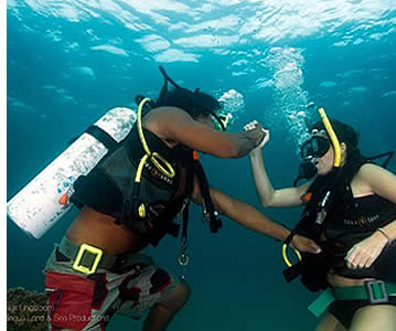 The theoritical part in scuba diving is very important as well